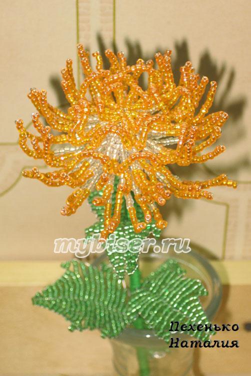 Хризантема (бисер)