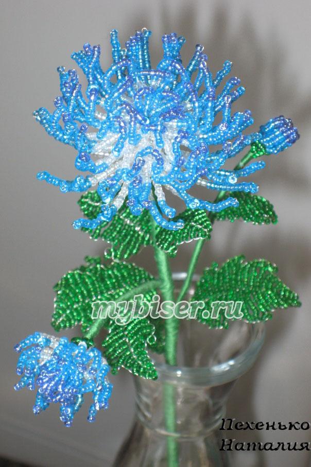 Хризантема голубая (бисер)
